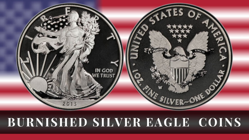 silver eagle coins review burnished silver eagle coins